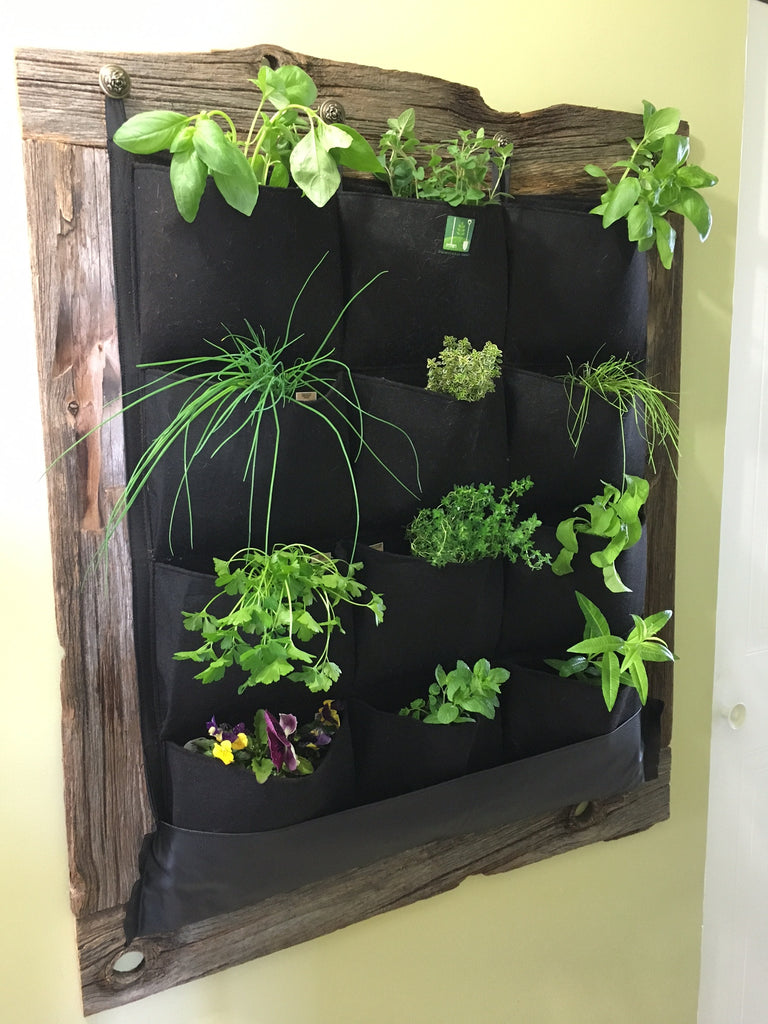12 pocket indoor waterproof vertical living wall planter. Black Bedroom Furniture Sets. Home Design Ideas