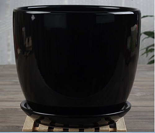 Ceramic Pure Black Planter with Tray