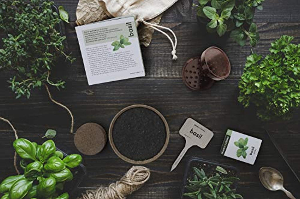 Organic Herb Growing Kit + Herb Grinder - Complete Kit to Easily Grow 4 Herbs from Seed (Basil, Cilantro, Chives & Parsley) with Comprehensive Guide - Unique Gift
