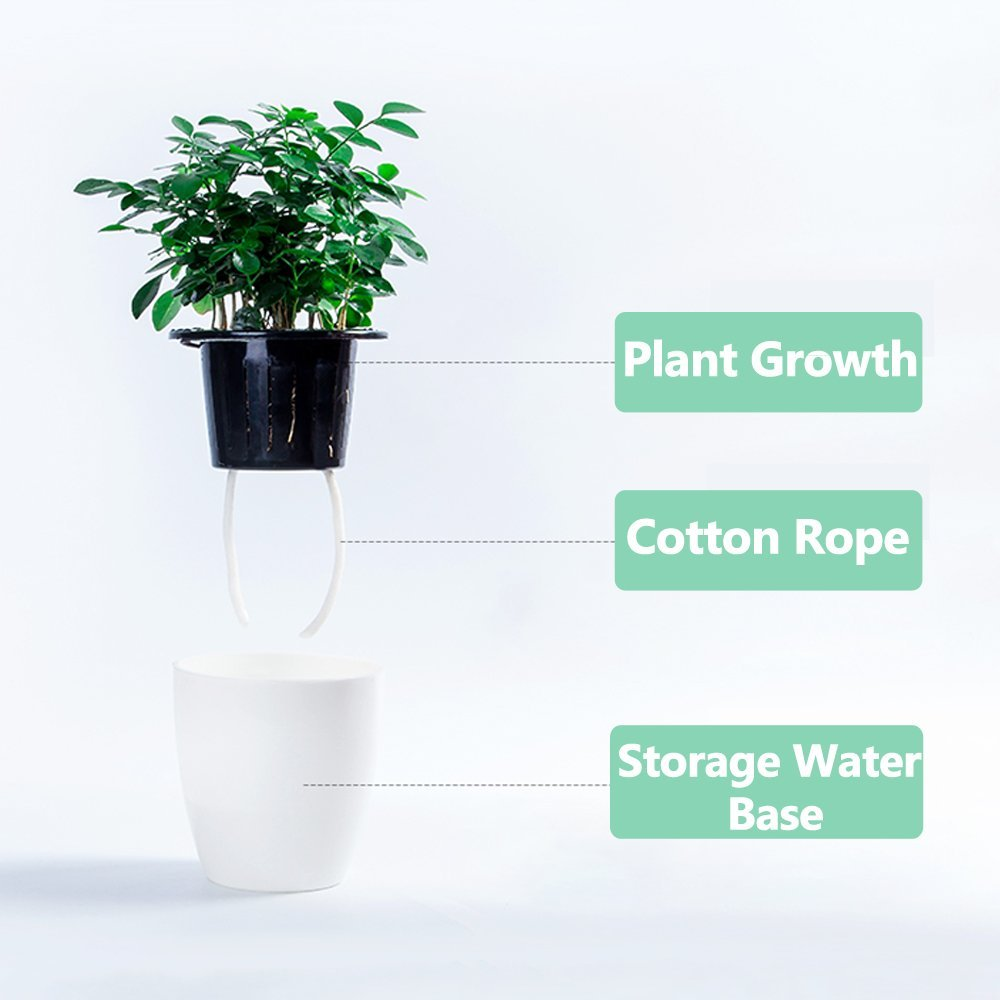 3 Pack Self Watering Planters