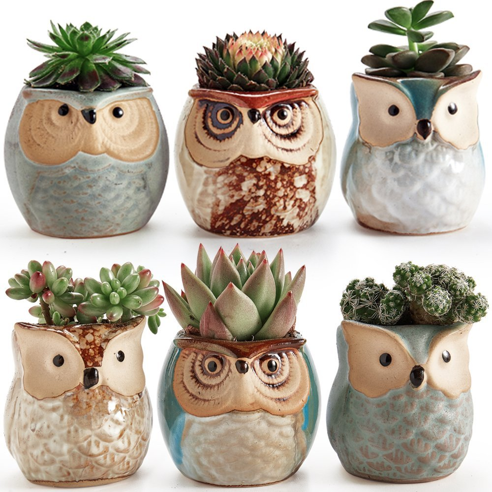 Set 2.5 Inch Owl  Ceramic Pots / Set of 6