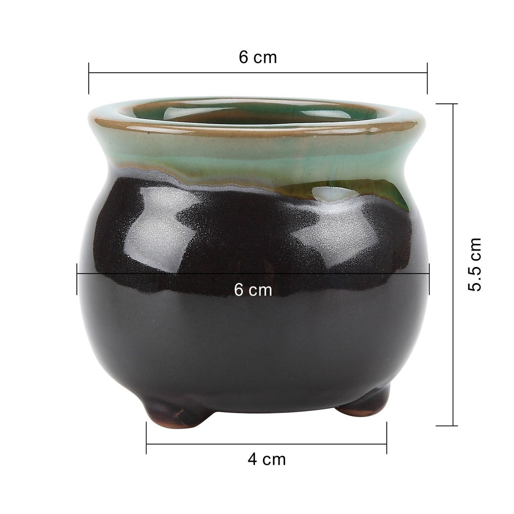 2.5 Inch Ceramic Succulent Pot / Pack of 6