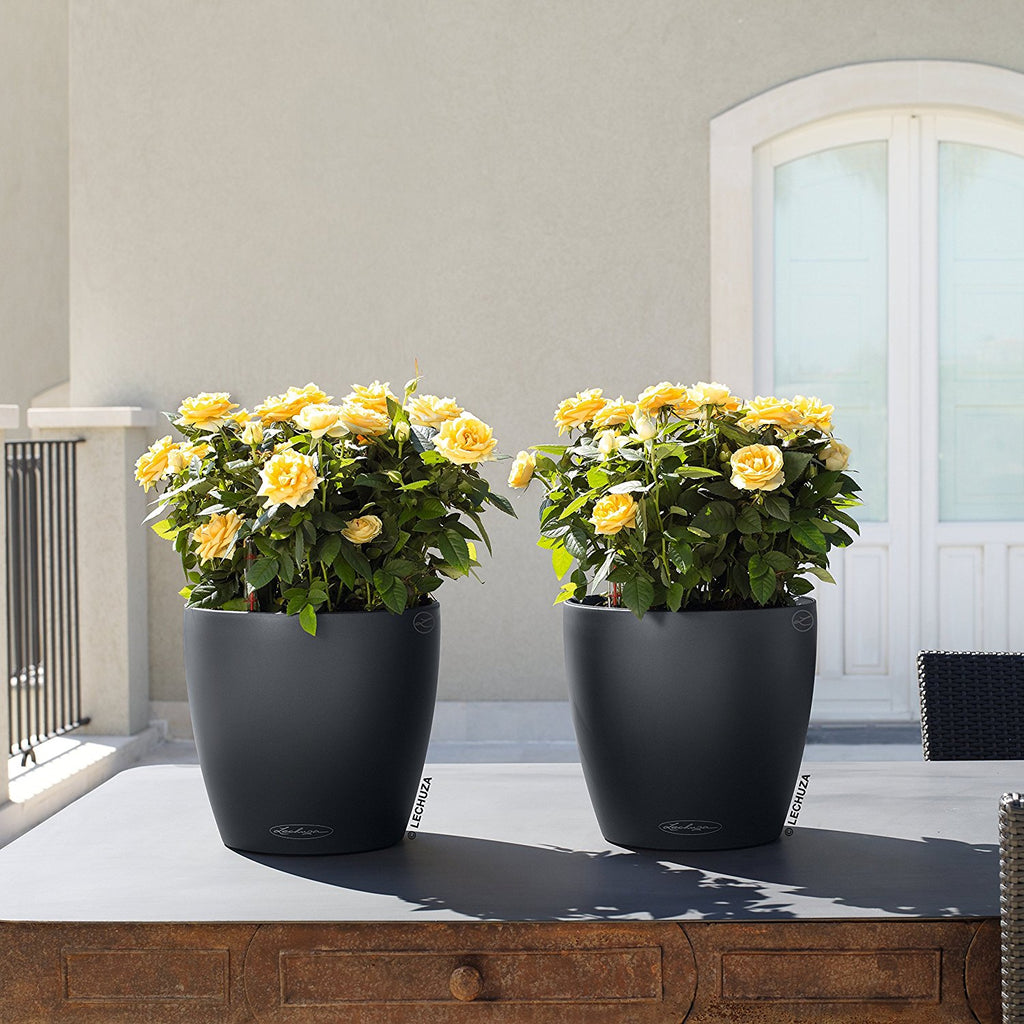 Self-Watering Black Planter, Slate Matte