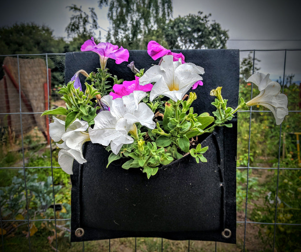 2 Pocket Eco Friendly Urban Saddlebag Planter Www