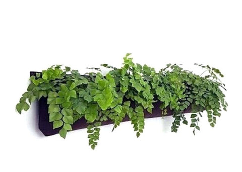 5 Pocket Indoor Waterproof Horizontal Planter - On Sale Now 15% OFF