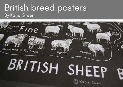 Portion of Katie Green's British Sheep Breeds poster in black with white illustrations and writing.  Containes all 72 British breeds.