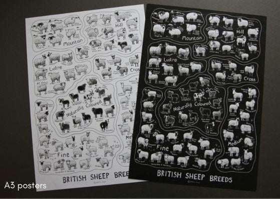 British Sheep Breeds Posters by Katie Green