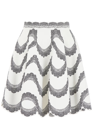 Alexander McQueen Printed Mini Skirt