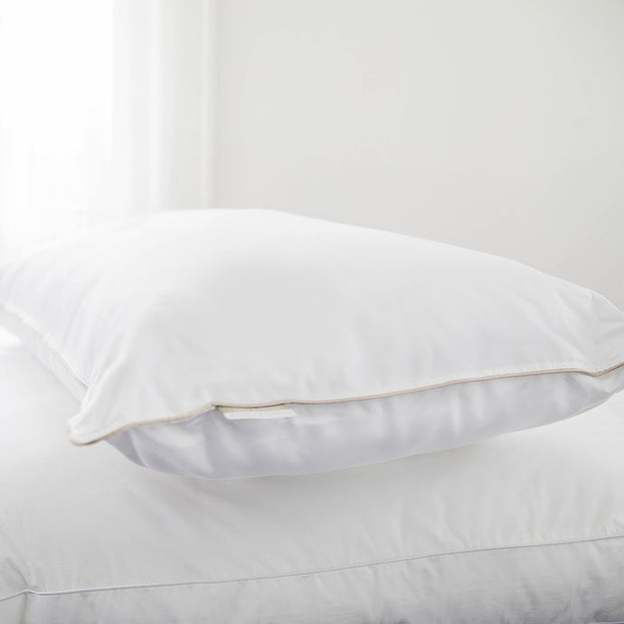 STEARNS & FOSTER 1000 TC PILLOW KING