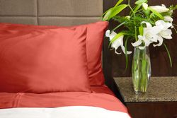 Emberglow Bamboo Pillowcase Set (2)