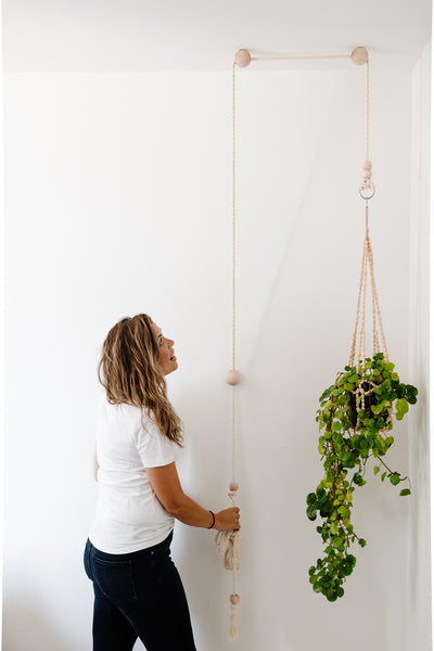 Modern Plant Pulley