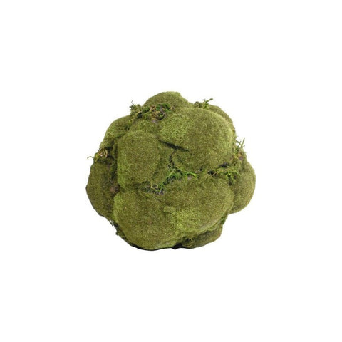 Moss Ball Small - taylorbdesign.com