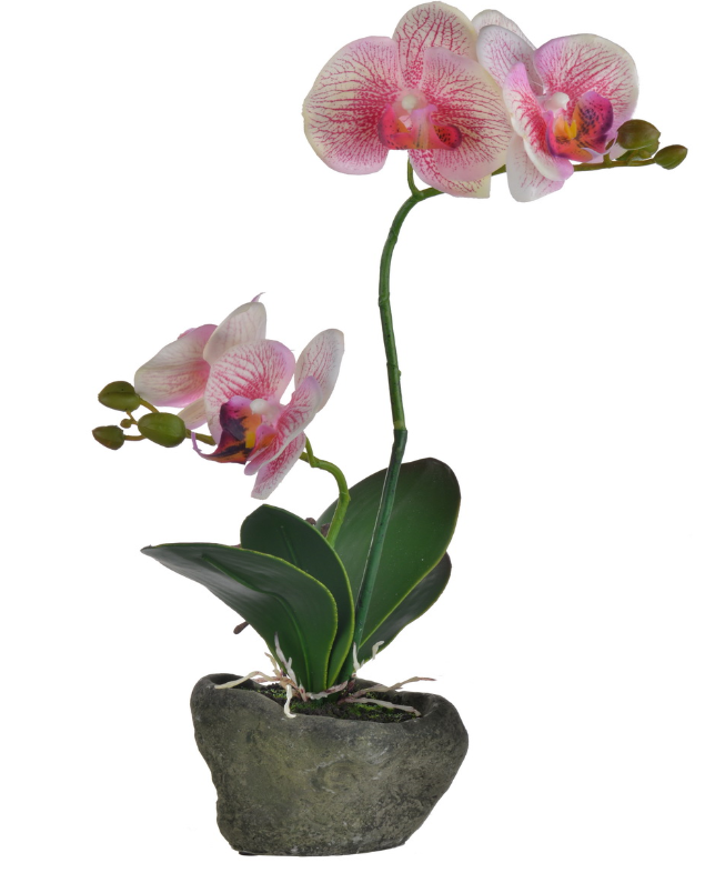 Stone Potted Real Touch Orchid (Pink)
