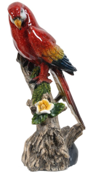 Macaw On Branch
