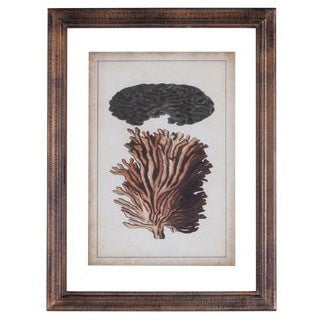 Wood Framed Vintage Coral Portrait #1