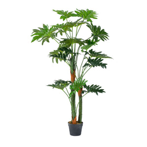 Un-Real Philodendron Plant With 24Leaves