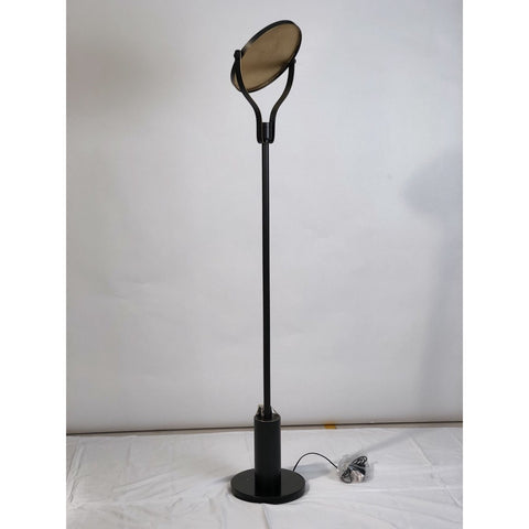 Metallic Sun Beam  Floor Lamp