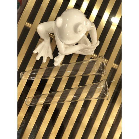 Image of White Resin Sitting Frog Glass Vase