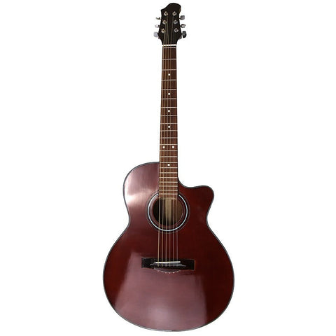 Chocolate Brown Gloss Finish Acoustic Guitar and Case FINAL PRICE $129.60