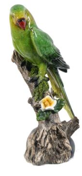 Image of Macaw On Branch