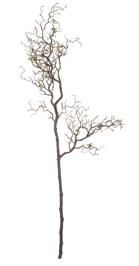 Artificial Dry Branch