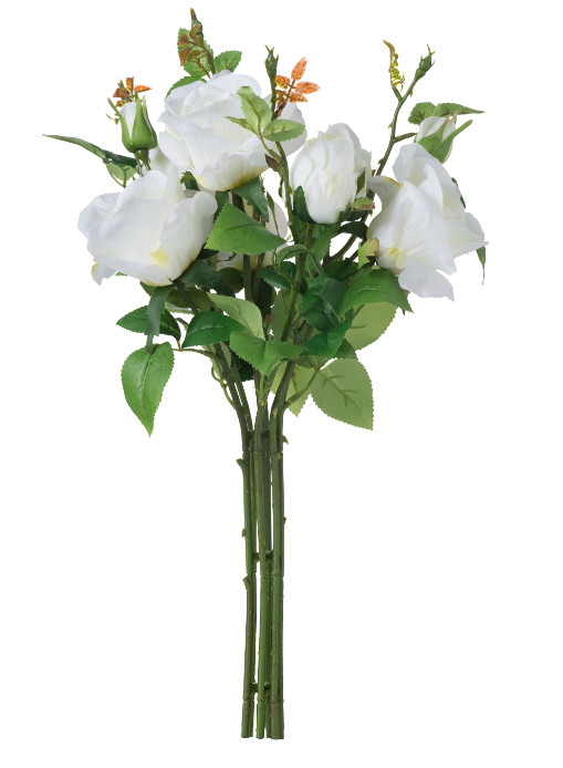 Rose Bouquet,White