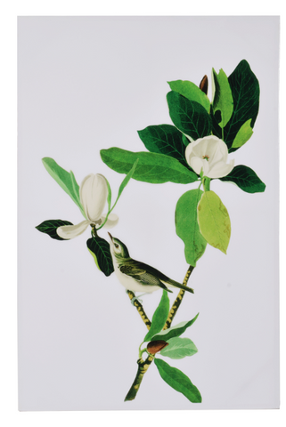 Image of MAGNOLIA BLOOMS WALL ART Design