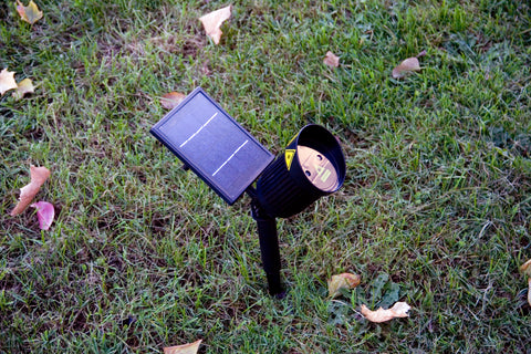 Outdoor Solar Laser Lights | Lasers and Lights