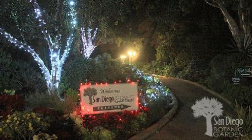 Garden-of-Lights-Holiday-Event-at-the-San-Diego-Botanic-Garden-2011-500
