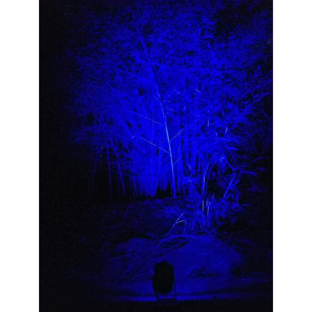 Outdoor Blue LED Spot Light Projector