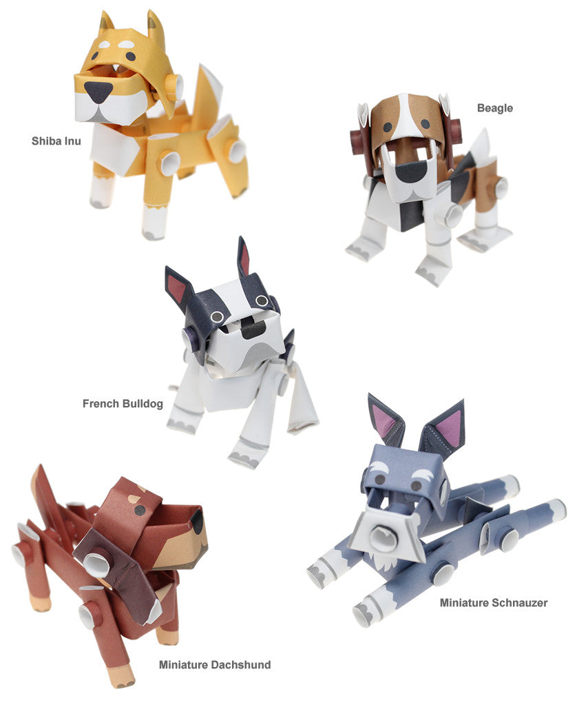 Piperoid Dogs