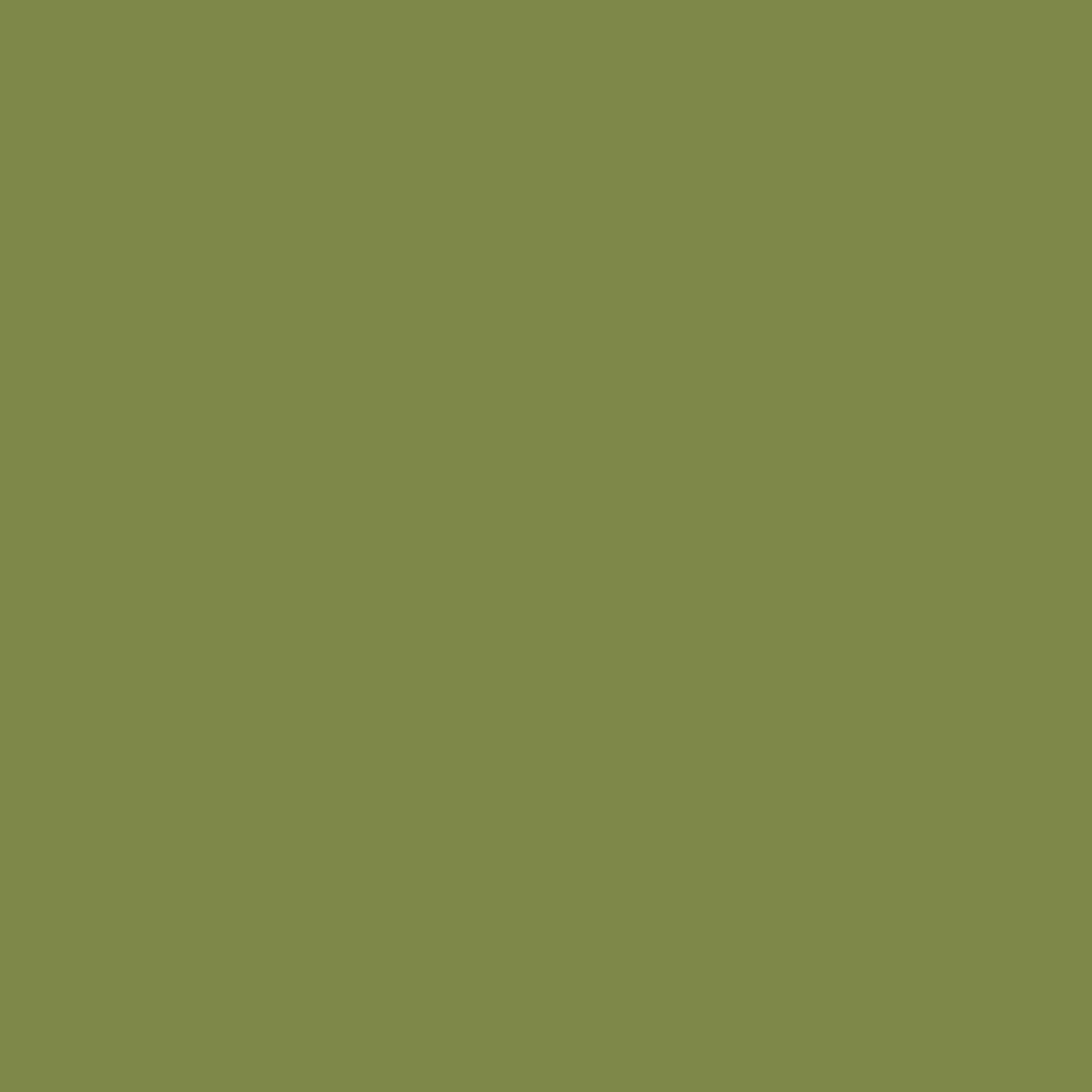 official photos 4dfdf 03d5f Olive Green Single Color Premium Origami Paper