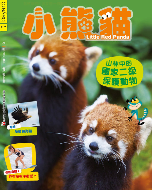 Little Red Panda - 0