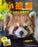 Little Red Panda - 26