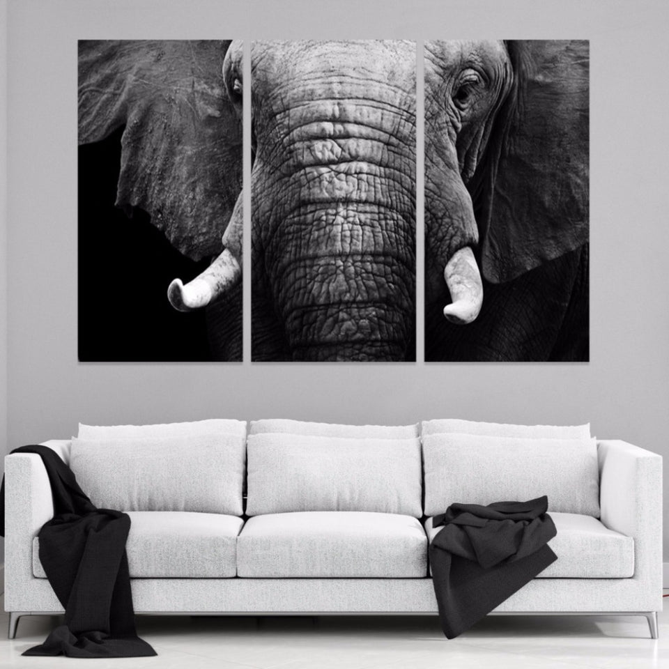 Elephant's Wisdom Canvas