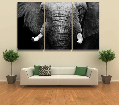 Canvas - Elephant's Face Canvas