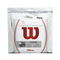 Wilson Champions Choice Duo Pack