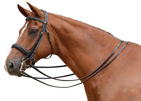 Albion - KB Competition Weymouth Bridle