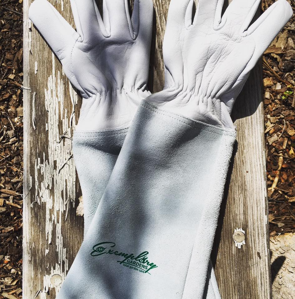Goatskin leather gloves ✔ ‪#‎pruininggloves‬ ‪#‎exemplarygardengloves‬