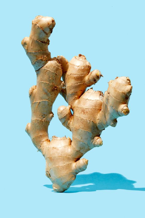 Fresh ginger makes fresh chai extra fresh!