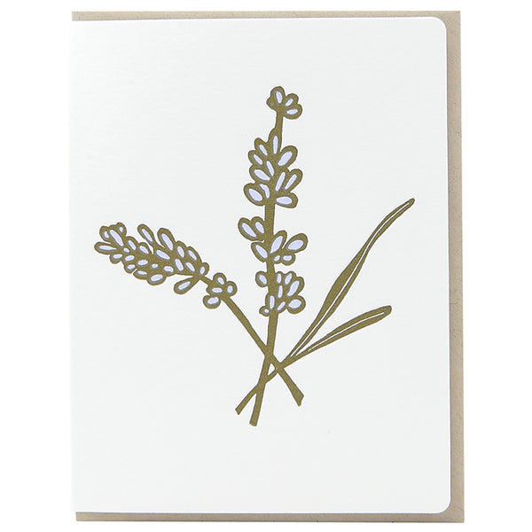 Botanicals 6 Card Set