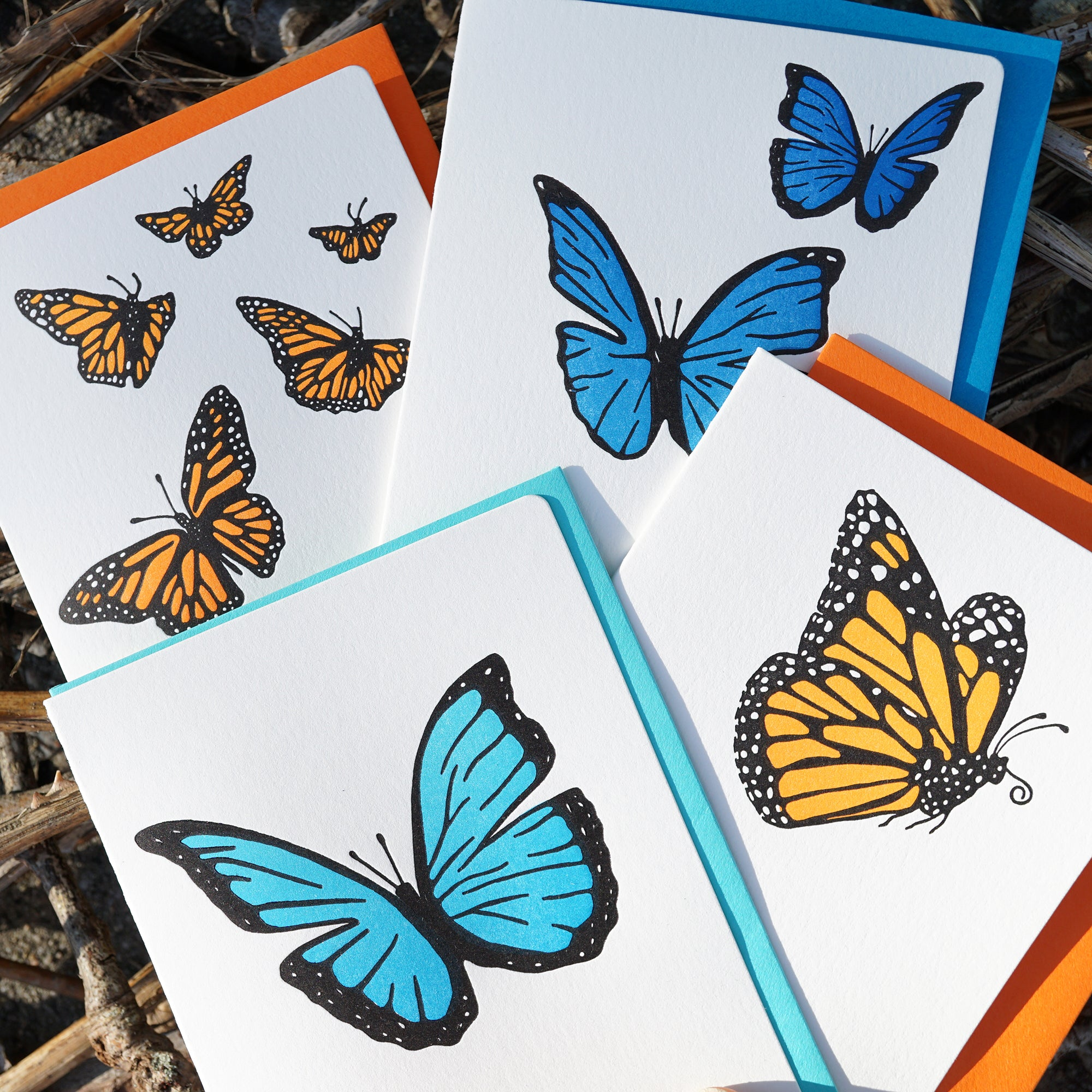 Butterfly suprise 4 card set