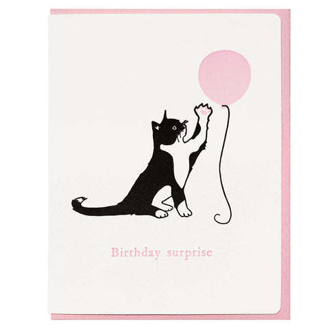 Cat Birthday Surprise