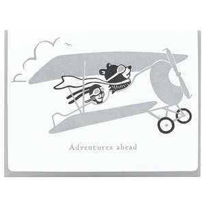 Adventures Ahead Aviators
