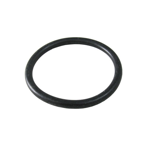 Waterco 50mm Oring - Poolshop.com.au
