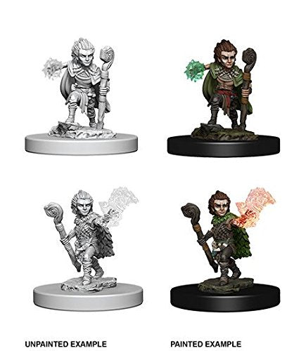 Pathfinder: Deep Cuts Unpainted Miniatures - Gnome Male Druid