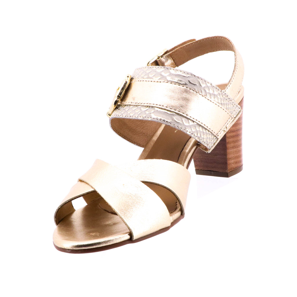 Brazilio - Cham Sandal - Gold Leather Heels - Pizazz Boutique