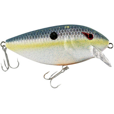 Bass pro shops xps mcshad hardbaits fishing 39 s finest for Bass pro shop fishing