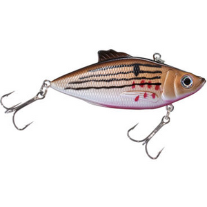 Bass Pro Shops XTS Rattle Shad - Fishing's Finest