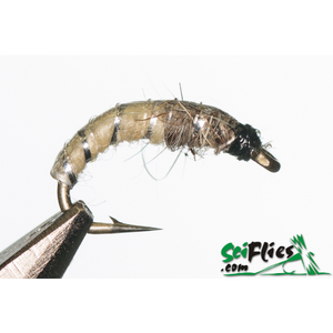 SciFlies Czech Nymph - Cream - Fishing's Finest